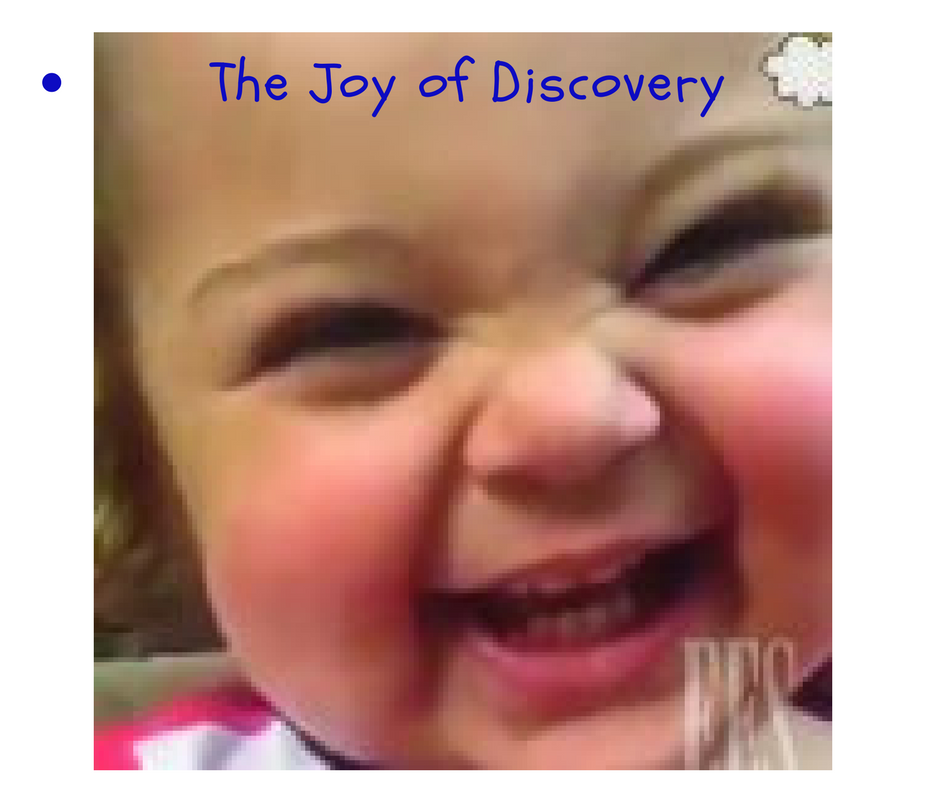the joy of discovery - ees blog